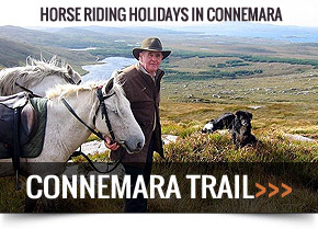 Connemara Trail: Horse Riding Holidays in Connemara